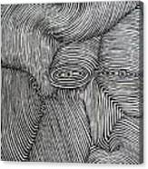 Zebra Line Canvas Print
