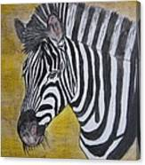 Zebra Portrait Canvas Print