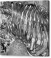 Zebra - Rainy Day Series Canvas Print