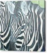 Zebra Triptych General Canvas Print