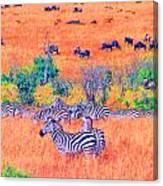 Zebras Above The Beast Canvas Print