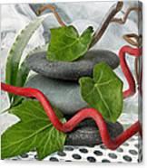 Zen 7 Canvas Print