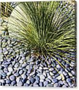 Zen Landscape Canvas Print