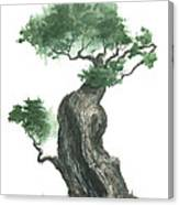 Zen Tree 1000 Canvas Print
