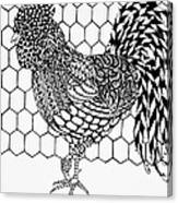 Zentangle Rooster Canvas Print