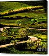Zigzags Of A Path Canvas Print
