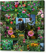 Zinnias Collage Rectangle Canvas Print