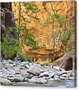 Zion Narrows Canvas Print
