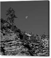 Zion National Park And Moon In Black And White Canvas Print