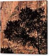 Zion National Park Canyon Walls With Silhouetted Trees In Front  Canvas Print