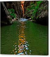 Zion Reflections - The Narrows At Zion National Park. Canvas Print