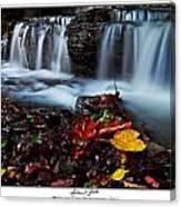 Autumnal Falls Canvas Print