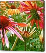 Field Of Flowers 2 Canvas Print