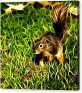 - Fractal - Pointer - Robbie The Squirrel Canvas Print