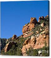 Red Rock And Pines Canvas Print