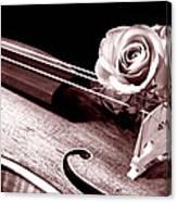 Rose Violin Viola Canvas Print