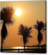 Summers Evening Canvas Print