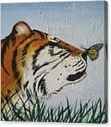 '' Tiger Colors'' Canvas Print
