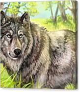 Wolf Summer Canvas Print