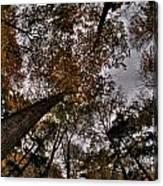 0014 Letchworth State Park Series Canvas Print