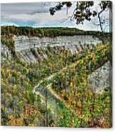 0021 Letchworth State Park Series   Canvas Print