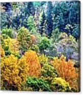 0026 Letchworth State Park Series   Canvas Print