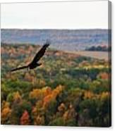 003 Letchworth State Park Series  Canvas Print