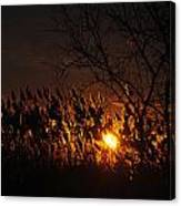 06 Sunset Canvas Print