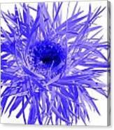0687c-015 Canvas Print