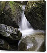 0706-0138 Smith Creek Rocks Canvas Print