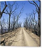 A Dirt Road Runs Along A Mountain Top Canvas Print