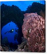 A Diver Looks On At A Giant Barrel Canvas Print