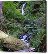 A Small Waterfall Canvas Print