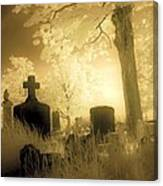Abandoned And Overgrown Cemetery Canvas Print