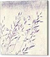 Abstract Gras Canvas Print