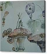 Album Of Crickets Canvas Print