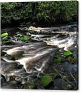 Almond River Canvas Print