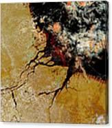 Amazon River In Northern Brazil Canvas Print