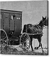 Amish Buggy Black And White Canvas Print