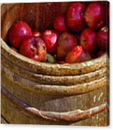 Apple Harvest Canvas Print