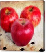 Apples Canvas Print