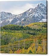 Autumn Dallas Divide Canvas Print