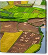 Bac Son Rice Field Canvas Print