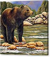 Bear Catch Of The Day Canvas Print