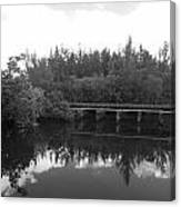 Big Sky On The North Fork River In Black And White Canvas Print