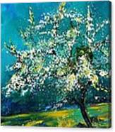 Blooming Appletree Canvas Print