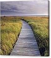 Boardwalk Along The Salt Marsh Canvas Print