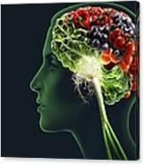 Brain Food, Conceptual Image Canvas Print