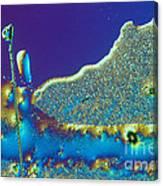 Buckyball Crystal Canvas Print