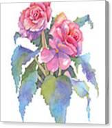 Carmel Begonias Canvas Print